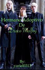 Hermano adoptivo de Draco Malfoy (Harry Potter) by yariel0313
