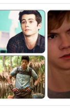 Maze Runner Preferences by basicallyanon