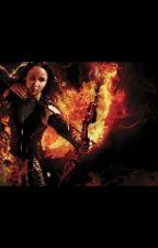 Les 76ème Hunger Games by lolo_blg