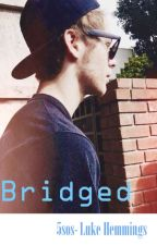 Bridged by merkee