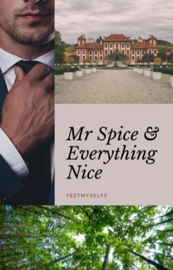 Mr. Spice & Everything Nice (BoyxManxMan+)