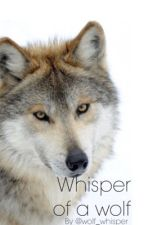 Whisper of a wolf by wolf_whisper