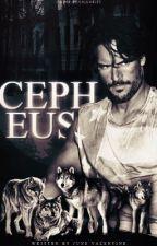 Cepheus by JuneValentine