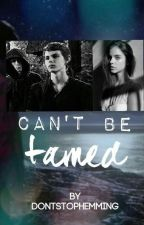 Can't be Tamed-Peter Pan Love story by DontstopHemming