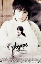 AGAPE (Myungsoo Suzy Oneshot Fanfiction) by farvidkar