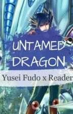 Untamed Dragon Yusei Fudo x Reader [Yu-Gi-Oh 5ds] by RedLikeRosesII