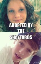 Adopted By The Shaytards by deeplygreysxa