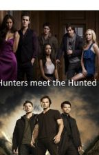 Hunters meet the Hunted (tvd/spn fanfiction) by liddya