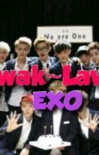 Lawak~Lawak EXO by hanifahhusna