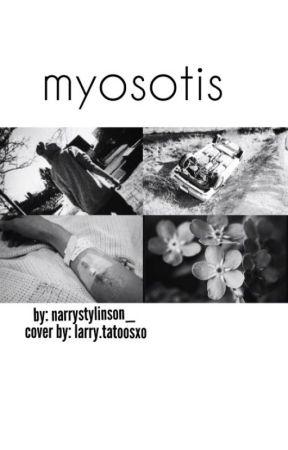 Myosotis by australianidict