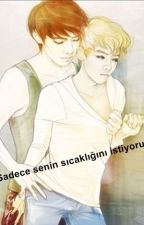 Sehun'un Sıcaklığı (one shot) by dyoexodyo