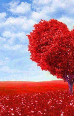 Aşk şiirleri Ve Sözleri Soğuk Hava Wattpad