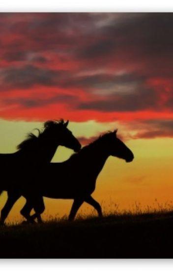The 2-horse Job
