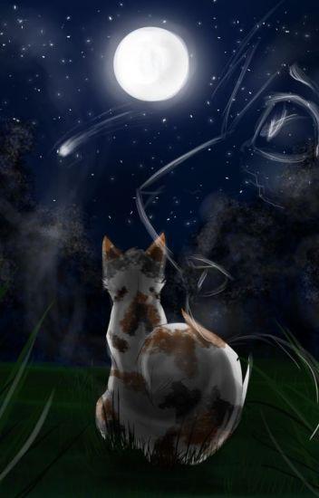 Broken Lovers (Warrior Cat Fanfic)
