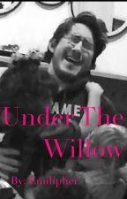 Under the Willow (Markiplier x Reader) by Emiliplier