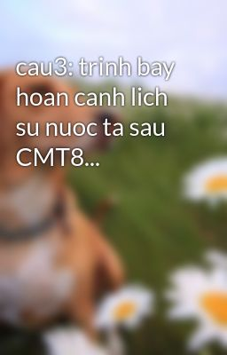 cau3: trinh bay hoan canh lich su nuoc ta sau CMT8...
