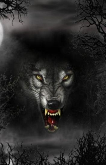 Le loup mystérieux ( Réécriture )