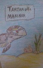 Tartaruga Marinha- tudo sobre. by --GVF--