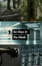 10 days in the glade // The Maze Runner: BOOK ONE (COMPLETE)  by Mazesandwhatnot