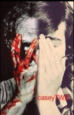 what i wouldnt do to protect you by caseyTWD