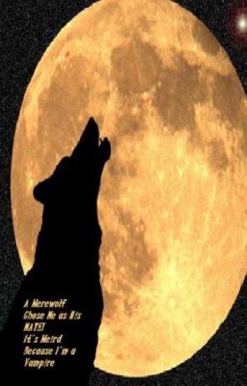 A Werewolf chose Me as His Mate, It's Weird Because I'm a Vampire