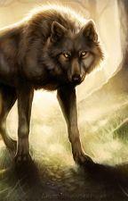 Ты не убежишь от волка by AelinaGalant