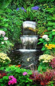 The garden by Eliza11225