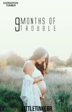 9 Months of Trouble by littletinkerr