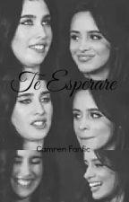 Te Esperaré (Camren Fanfic) by laureguiwife