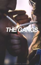 Dealing With The Gangs by angelica20000