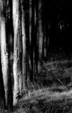 Darkness by Bmthbmthandbmth