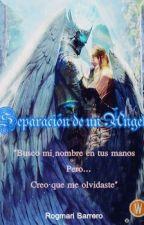Separación de un Ángel by rogmarib