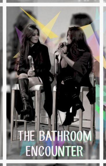 The bathroom encounter (Camren)
