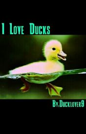 I Love Ducks! by Ducklover9