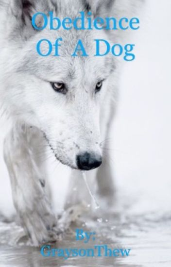 Obedience of a Dog