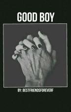Good Boy-[A.I] au by bestfriendsforeverf