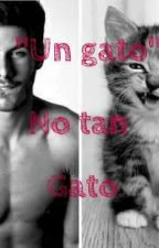 Un Gato No Tan Gato:3 by AnaRamos01
