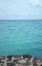 La vita è come un mare in burrasca che non cessa mai di osare by ElisaSaibene