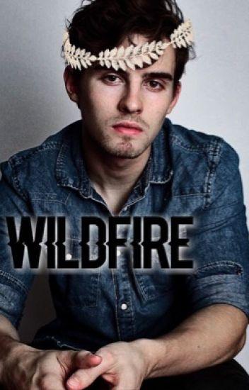 Wildfire- The Vampire Diaries  {Book 1}