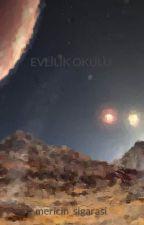 EVLİLİK OKULU by okurkus_06