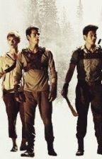 The Maze Runner Imagines/Preferences by red_string_of_stydia