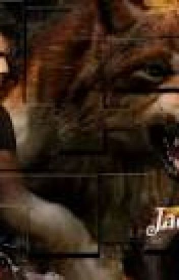 Casada con un lobo (Jacob Black y tu)