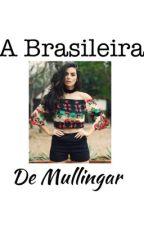 A Brasileira De Mullingar 2 - Niall Horan Fan Fiction (1° continuação) by leticiasdel