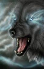 Волки by melholm