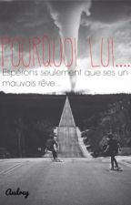 Pourquoi lui.... Tome 2 by Maudrey2001