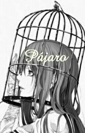 Pájaro by YunaYami