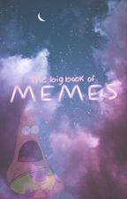 The Big Book Of MEMES!!! by NerdyCookie101