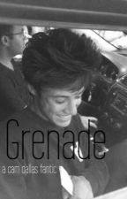 Grenade. - Cam Dallas - by mikxycliff