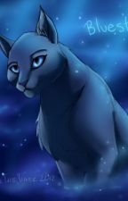 How to get kicked out of Starclan by Annabethkitty8