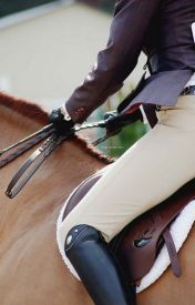Equestrian life by JTheEquestrian